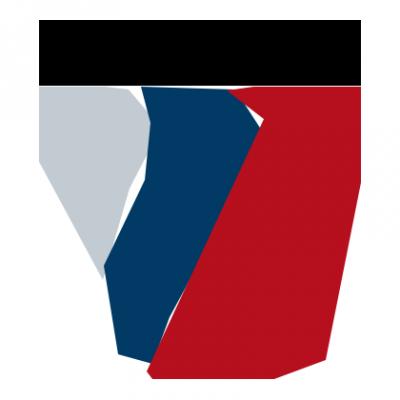 Fermat 1